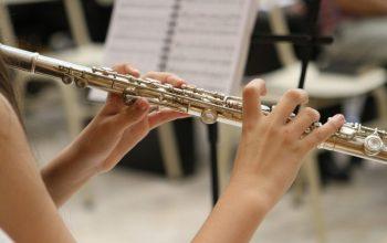 La flauta es un instrumento musical muy interesante 10