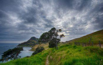 11 lugares que ver en Nueva Zelanda 10